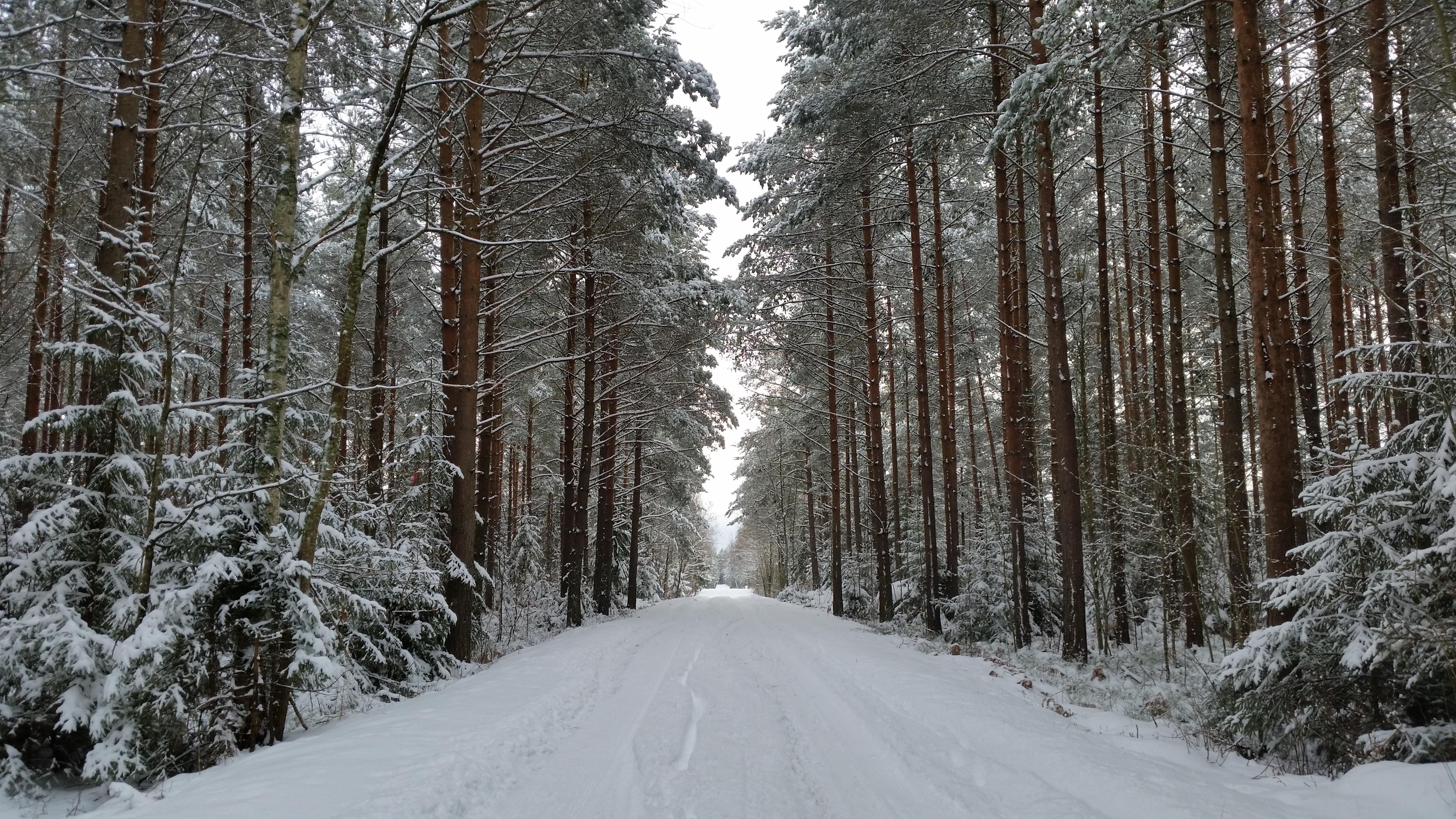 På väg mot Värsnäs